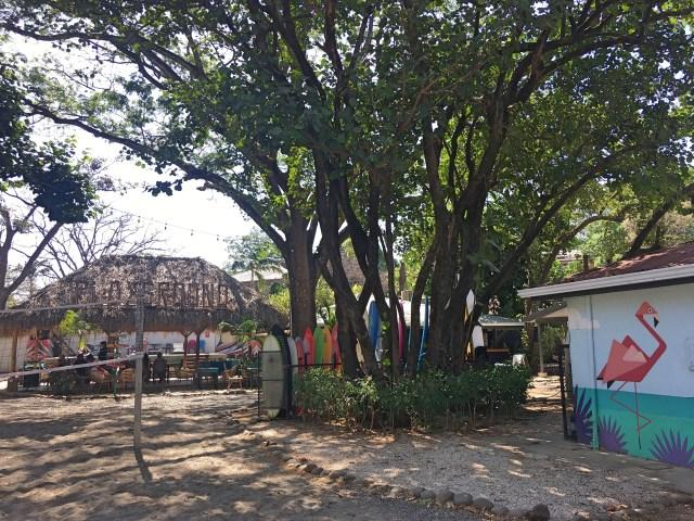selina tamarindo hostel