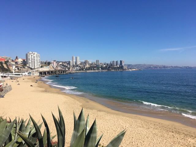 beach in vina del mar chile