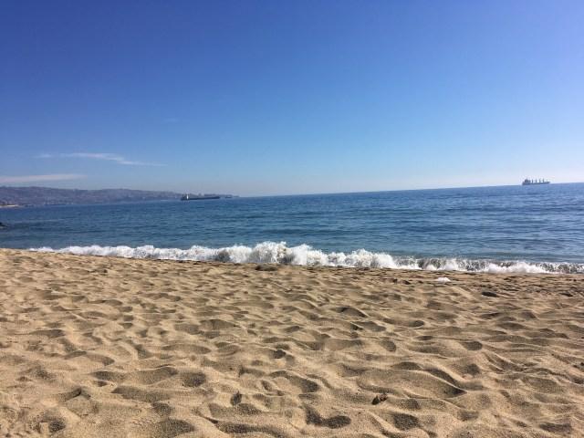 beach vina del mar