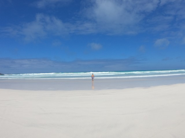beaches in galapagos