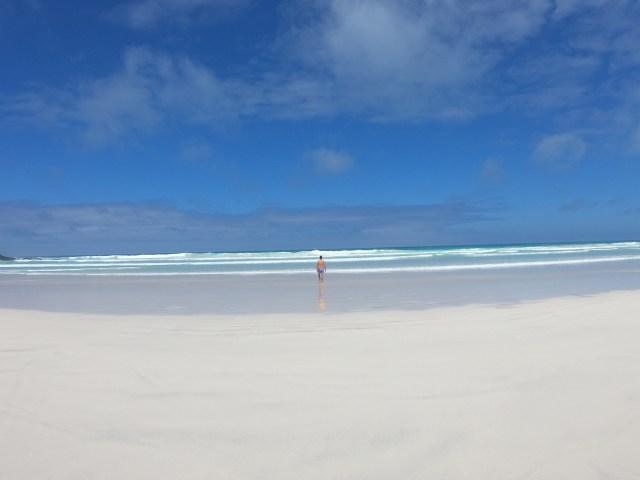 beaches in galapagos