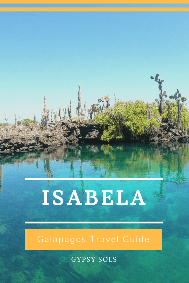Isabela Galapagos Travel Guide