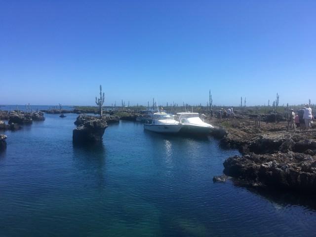 tour in galapagos