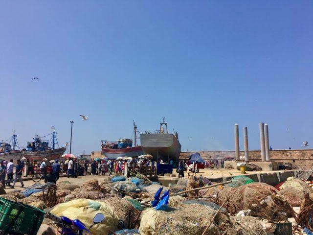fish market essaouira