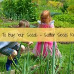 Time To Buy Your Seeds – Sutton Seeds Review