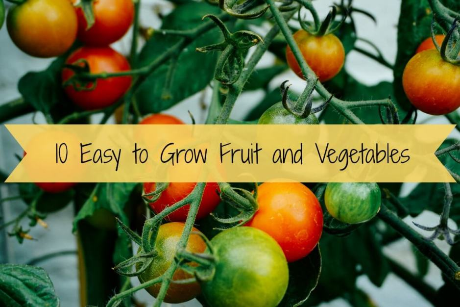 10 East to Grow Fruit and Vegetables
