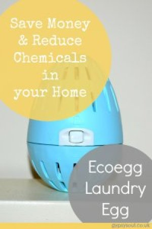 Find out how you can save money and reduce the amount of chemicals in your home with an Ecoegg