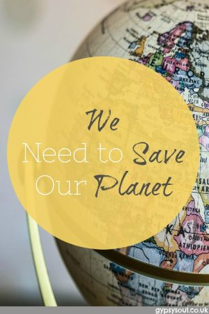 We need to save our planet but how?