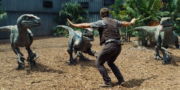 Dans Jurassic Park III, les vélociraptors avaient quelques plumes: on venait de découvrir qu'ils en avaient dans la vraie vie et l'élément avait été intégré au film. Aujourd'hui, on sait qu'ils étaient quasiment entièrement couverts de plumes, mais on leur a rendu leur allure de mini-t-rex. Notez la délicate subtilité: Blue a une ligne bleue sur le corps.