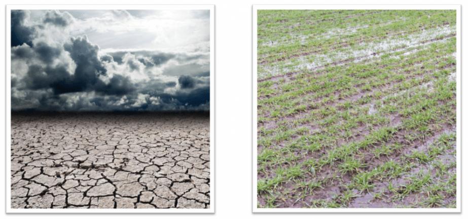 Wet versus dry antecedent moisture conditions