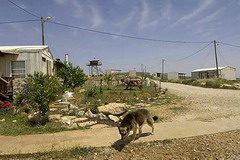 An illegal outpost in the West Bank