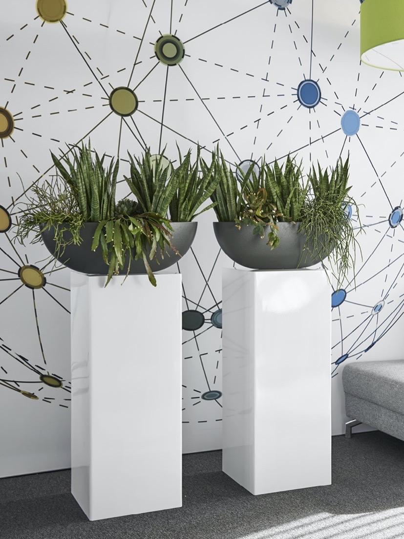Jago Kunstoff Amsterdam Blumentopf Gefäß Grau- Haas Innengrün
