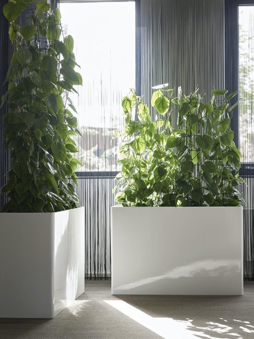 Jago Kunstoff Prestige Raumteiler Blumentopf - Haas Innengrün