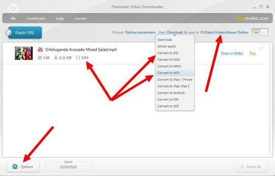 Freemake video downloader: settings