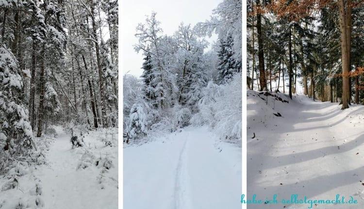Winterwandern Goldsteig - 3. Tag von Hauzenberg nach Passau