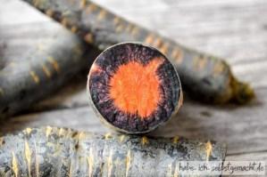 Lila Karotten