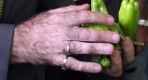 Yenişehir biberi emin ellerde