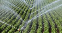Barajlardan tarıma can suyu