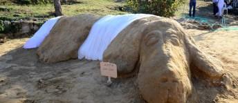 Vahşice öldürülen Zeytin'in kumdan heykeli yapıldı