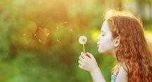 Bursa'nın polen değerleri kayıt altında
