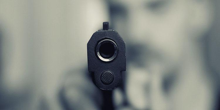 Almanya'da 5,4 milyon silah