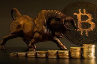 Başarılı Analist Bitcoin İçin Boğa Koşusu Yaşanacak Tarihi Duyurdu