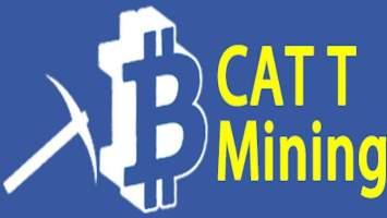 Catex borsası nedir