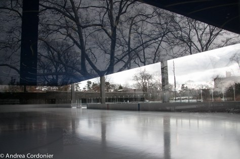 Ice skating rinks in New York City, Prospect Park