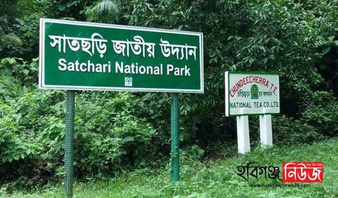 Satchari-National-Park-Habiganj-news-24