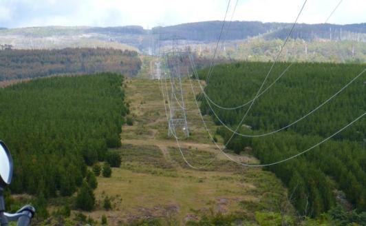 Utility Scar, Derwent Valley
