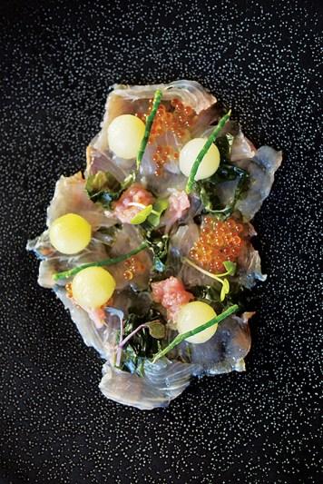 Majeka House - Makaron Restaurant - Ceviche, Melon, Sea lettuce 10 (HR)