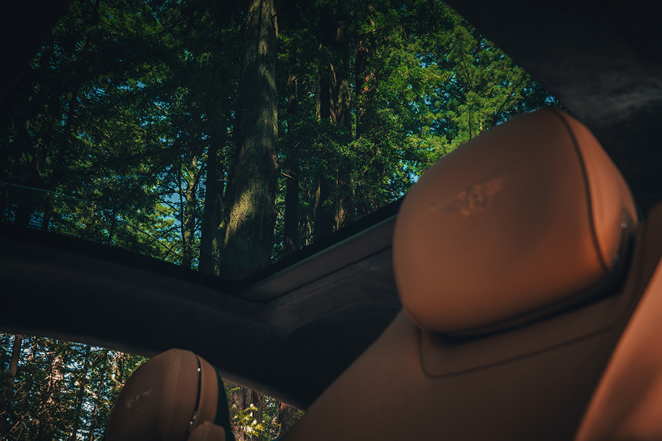 Continental GT Sunroof