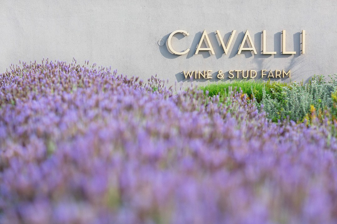 CavalliEstate_EntranceLavender