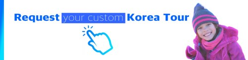 Request your custom Korea Tour