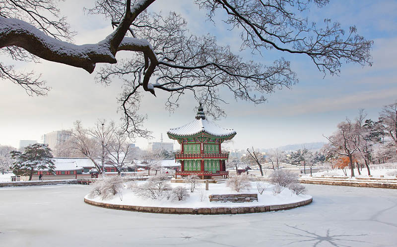 Free admission of the four Korean national palaces