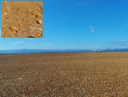 El paisaje que se puede ver en algunas zonas de la mina, en concreto sobre la balsa de lodos, se parece mucho al de la supercifie de Marte.