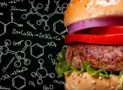 o-SCIENCE-JUNK-FOOD-facebook