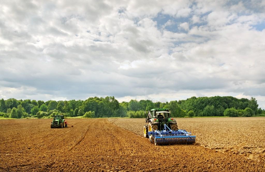 Cultivos mejorados para cuidar del suelo