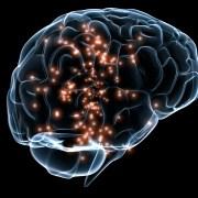 Human Brain Project: el reto de simular el cerebro