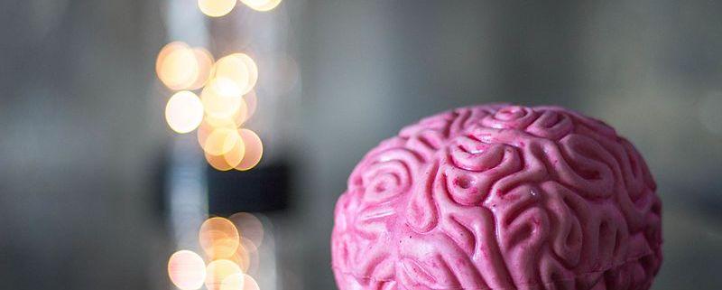 Daño Cerebral Adquirido: un asunto de familia