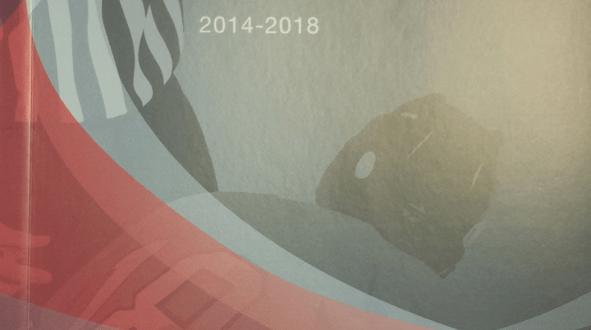 Règles IIHF 2014-2018