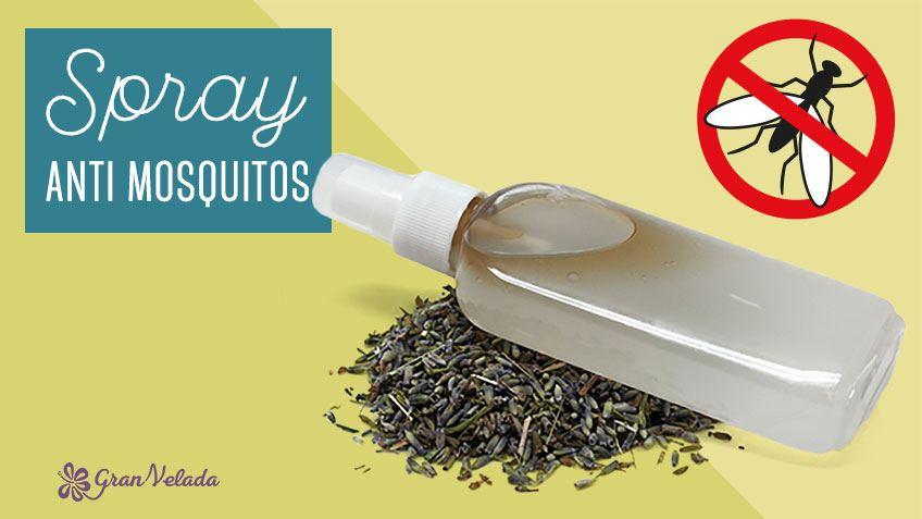 Tutorial para hacer Spray Anti-Mosquitos casero con plantas naturales