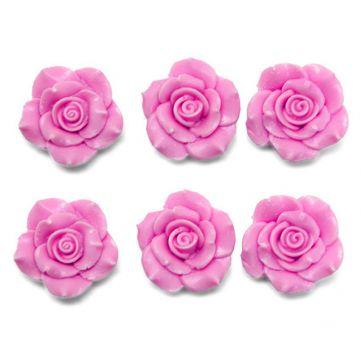 Seis rosas pequeñas