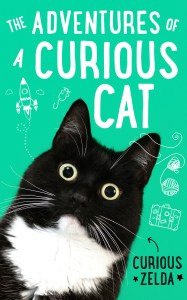 Curious cat cover