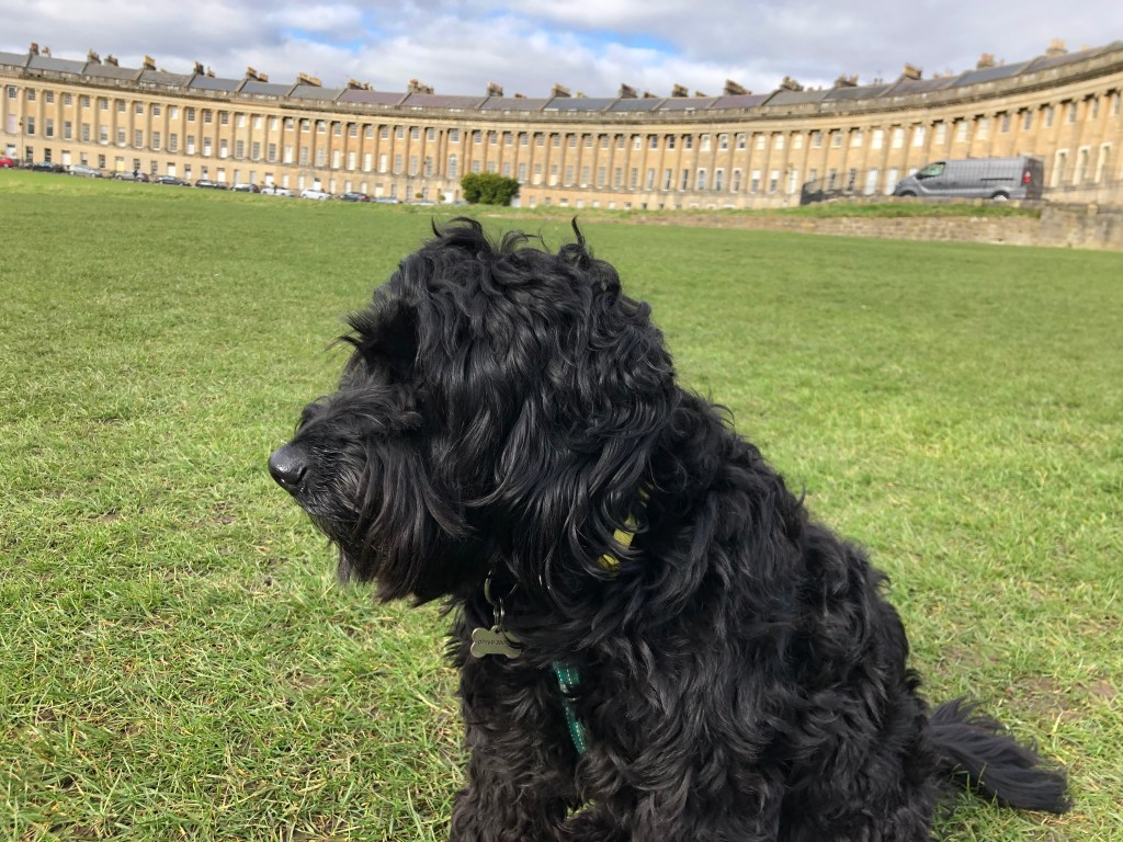 Betty in Royal Crescent - Keith Stuart