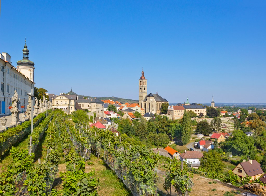 aerial view of a czech city with vineyards and old buildings