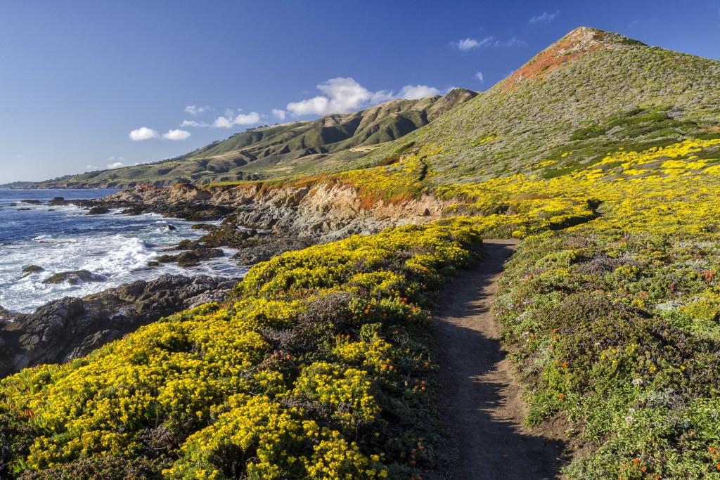 Big Sur hiking trail and coastal view