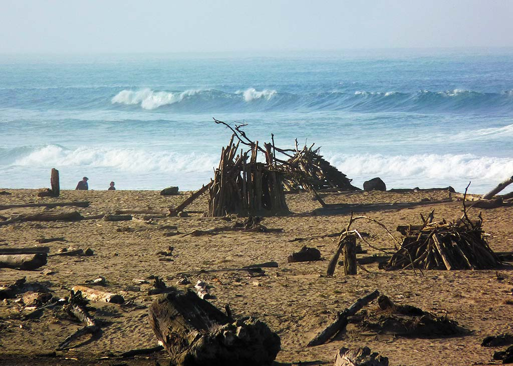 Driftwood sculpture on the beach at San Gregorio in Northern California