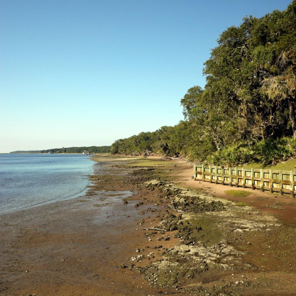 The shore at Cumberland Island beach