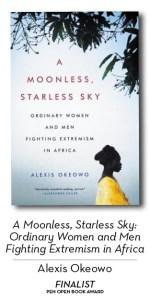 亚历克西斯·奥科沃(Alexis Okeowo)的无月星空